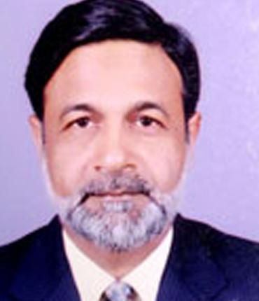 Prof. Nafasat Ali Ansari